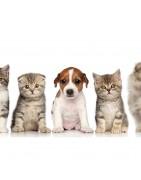 Nos produits vétérinaires - MaParapharmacie.ch